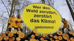 Bild Greenpeace
